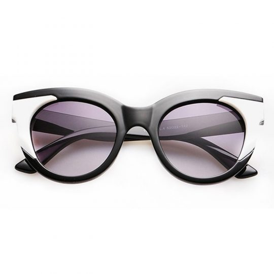 Adept Sunglasses 3
